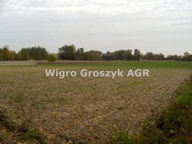 Działka rolna Cegłów