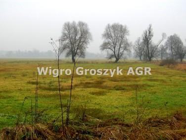 Działka rolna Leszno