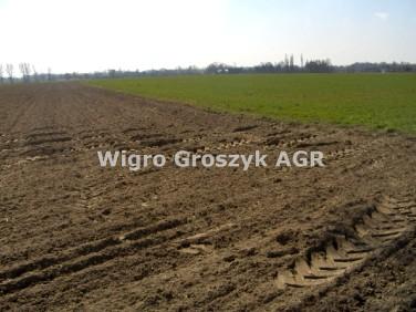 Działka rolna Rochaliki