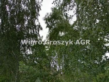 Działka budowlano-rolna Kaliszki