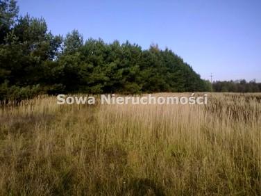 Działka budowlana Ozorowice