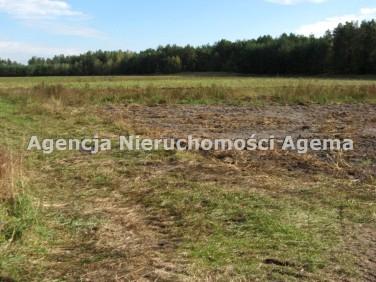 Działka rolna Białogrądy sprzedam