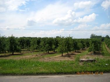 Działka budowlano-rolna Sobienie-Jeziory