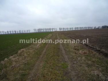 Działka rolna Dopiewo