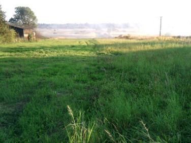 Działka budowlano-rolna Dąbie