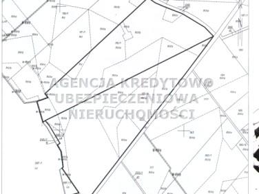 Działka rolna Miłoradz