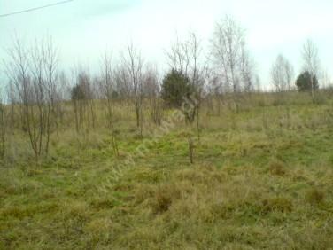 Działka rolna Puszcza Mariańska