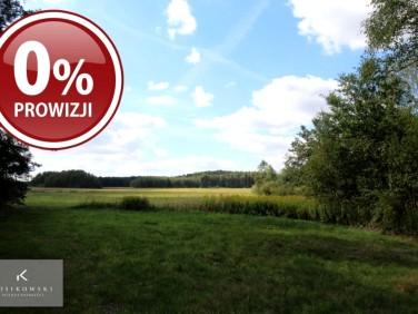 Działka rolna Międzybórz