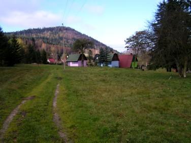Lokal Nowa Morawa