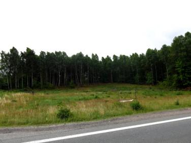 Działka Luzino