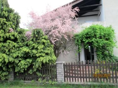 Dom Mojęcice sprzedaż