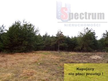 Działka budowlana Huta Mazowszańska