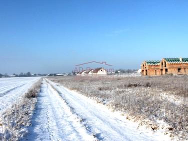 Działka Dąbrowa