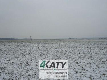 Działka rolna Łąka