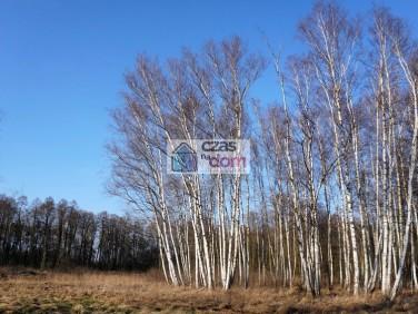 Działka rolna Lesznowola sprzedam