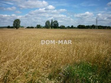 Działka rolna Szynkielew