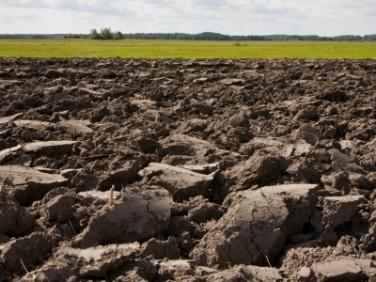 Działka rolna Łaziska