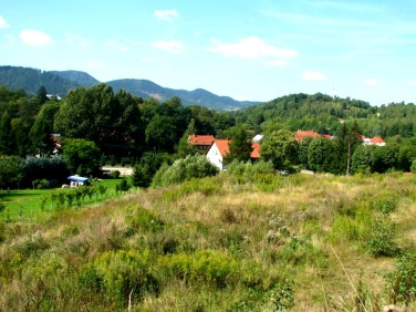 Działka Jedlina-Zdrój