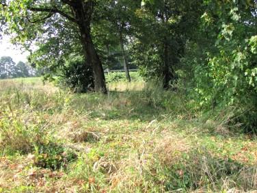 Działka rolna Sedranki