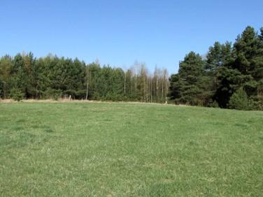 Działka rolna Nowa Wieś Ełcka