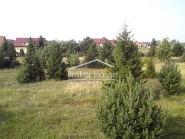 Działka budowlana Dąbrowa