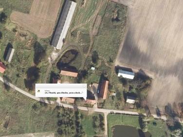 Dom Plewki