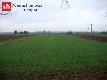 Działka budowlano-rolna Marszowice
