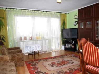 Mieszkanie Wróblew