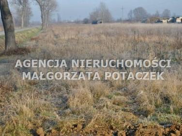Działka rolna Brzezinka