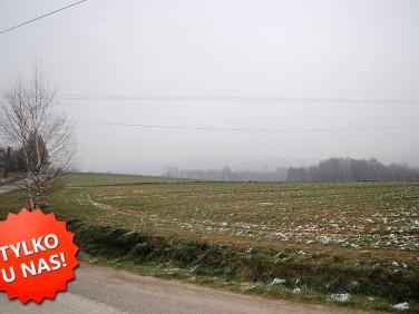 Działka rolna Zwiernik
