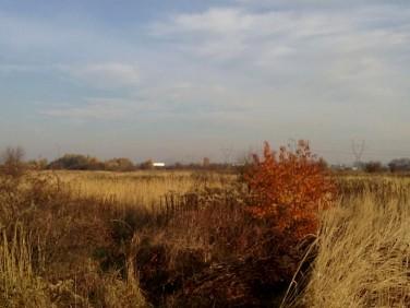 Działka rolna Tarnów