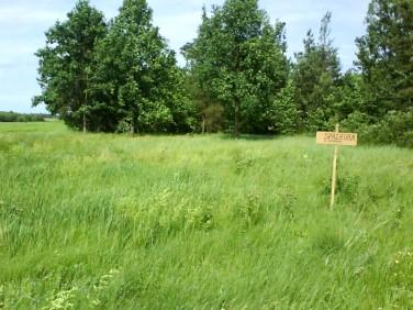 Działka budowlano-rolna Nowa Dębowa Wola