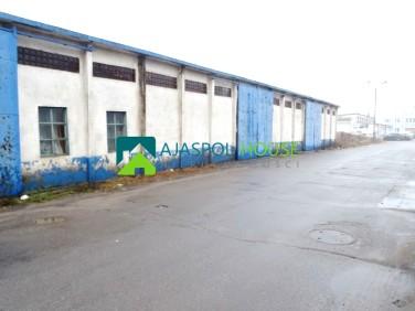 Budynek użytkowy Łapy sprzedaż