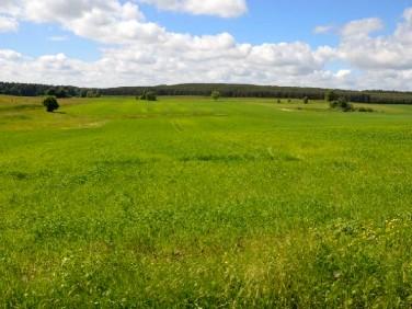 Działka rolna Podole Małe