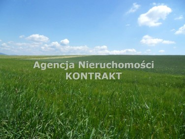 Działka rolna Lipowa