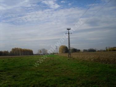 Działka rolna Baranów