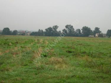 Działka budowlana Dawidy Bankowe