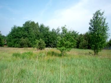 Działka Radziejowice-Parcel