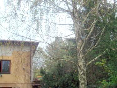 Dom Słubica-Wieś
