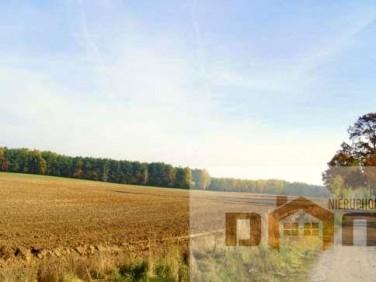 Działka budowlano-rolna Rogowo