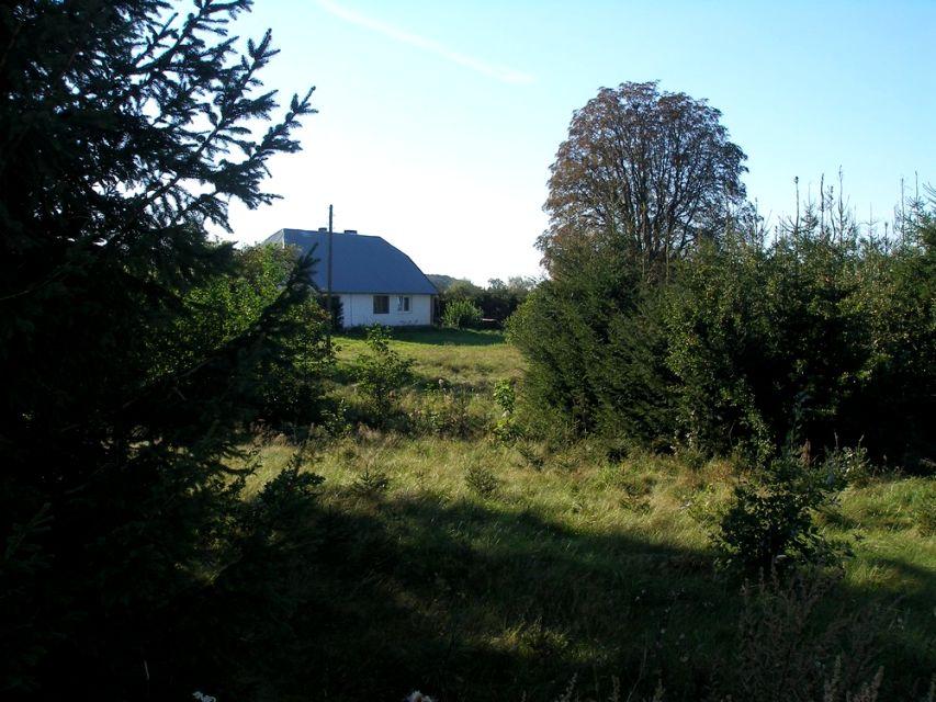Dom Płoty