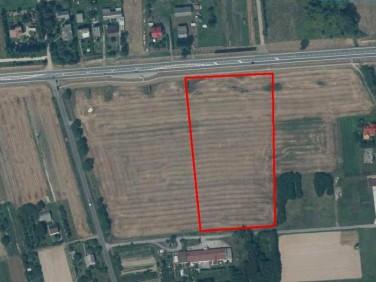 Działka inwestycyjna Dąbrowa
