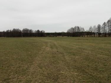 Działka rolna Szczechy Małe