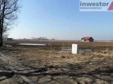 Działka rolna Karwowo