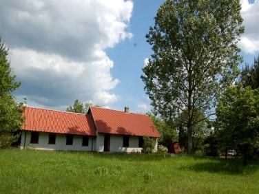 Dom Krzepice