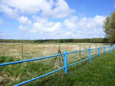 Działka rolna Białogóra