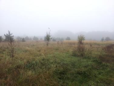 Działka budowlana Rabinówka