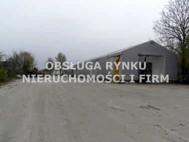 Budynek użytkowy Brzeźnica Bychawska-Kolonia
