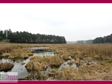 Działka budowlano-rolna Wrzesina
