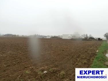 Działka budowlana Świdnik Duży sprzedam